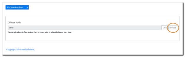 Screenshot: Choose audio dialog.