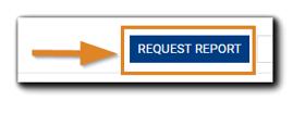 Screenshot: Request Report button, highlighted.