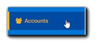 Screenshot: Accounts option on left-side Portal navigation.