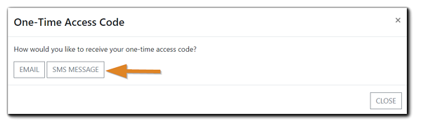 Screenshot: One-time access code window with the SMS option included and highlighted.