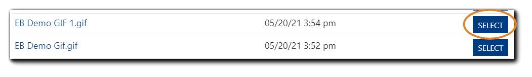 Screenshot: File Selection dialog with file name EB Demo GIF 1,gif and the Select button highlighted.