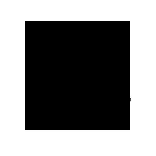 inclusion-icon
