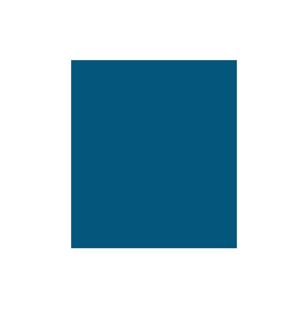 live-icon